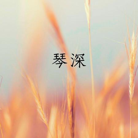 琴深 專輯封面