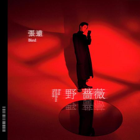 野薔薇 專輯封面