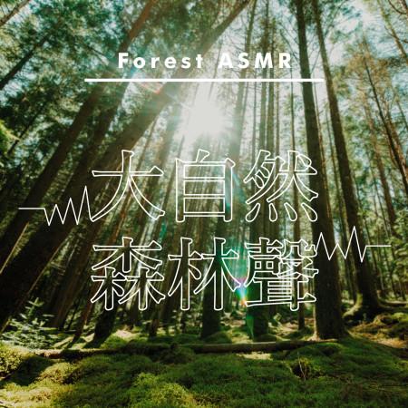 ASMR沉眠白噪音.大自然森林聲 (Forest ASMR) 專輯封面