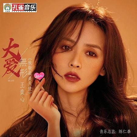 大愛無形(致敬最美天使) 專輯封面