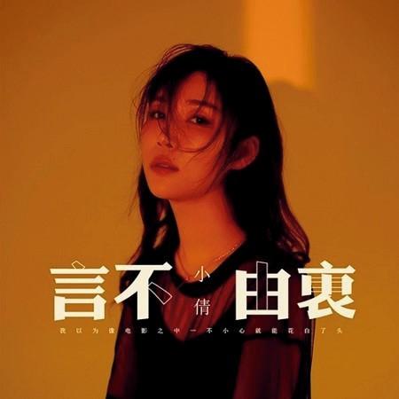 言不由衷 (DJheap九天版) 專輯封面