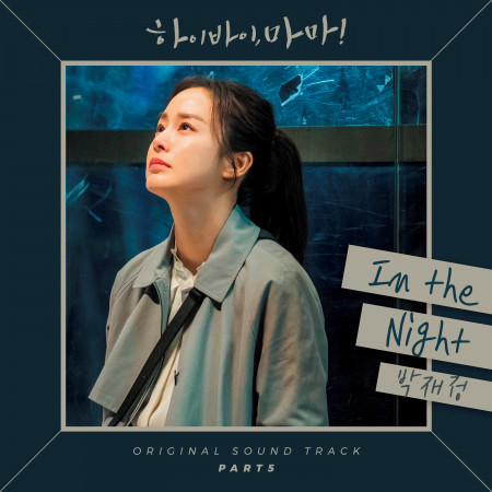 Hi Bye Mama (Original Television Soundtrack), Pt. 5 專輯封面