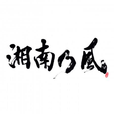 Shounanno Kaze -Real Riders- 專輯封面