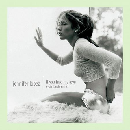 If You Had My Love (Cyber Jungle Remix) 專輯封面