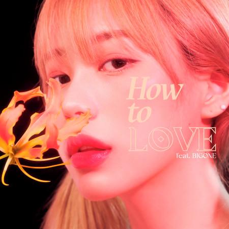 How to Love (feat. BIGONE) 專輯封面