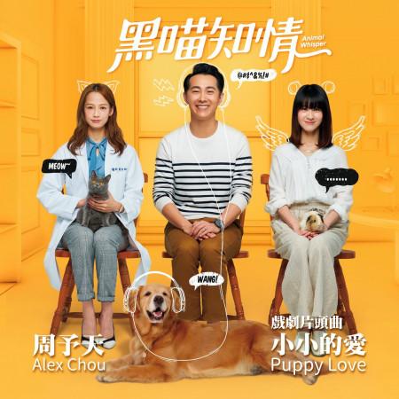 小小的愛 (《黑喵知情》片頭曲) 專輯封面
