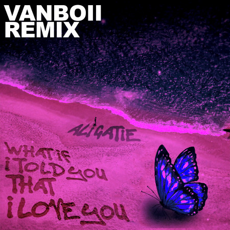 What If I Told You That I Love You (Vanboii Remix) 專輯封面