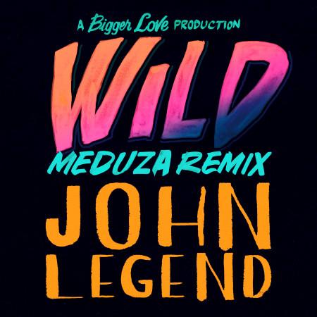Wild (Meduza Remix) 專輯封面