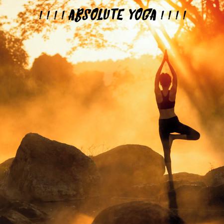 ! ! ! ! Absolute Yoga ! ! ! ! 專輯封面