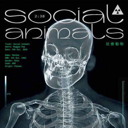 社會動物 專輯封面