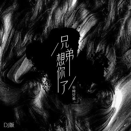 兄弟想你了(DJ版) 專輯封面