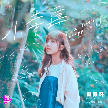 小幸運 專輯封面
