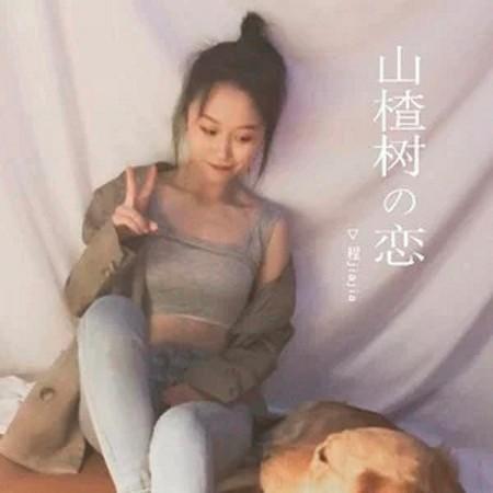山楂樹の戀 專輯封面