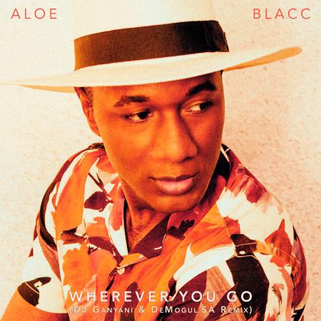 Wherever You Go (DJ Ganyani & De Mogul SA Remix) 專輯封面