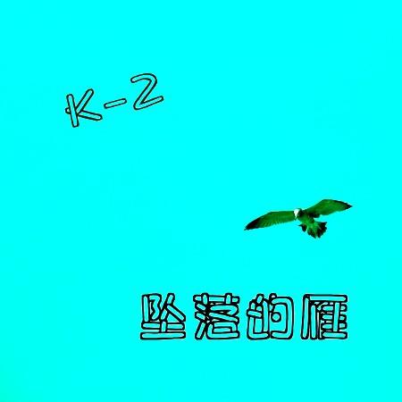 墜落的雁 專輯封面