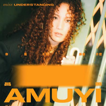 你是不是誤會什麼(Miss understanding) 專輯封面
