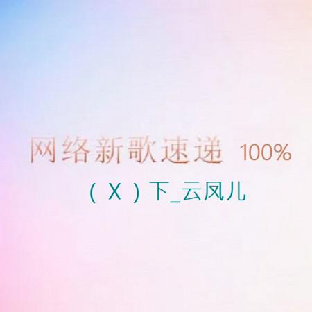 網路新歌速遞100%(Ⅹ)下_雲鳳兒 專輯封面