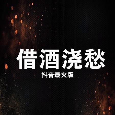 借酒澆愁(抖音最火版) 專輯封面