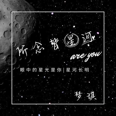 所念皆星河 專輯封面