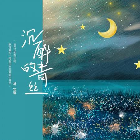 沉醉的青絲 專輯封面