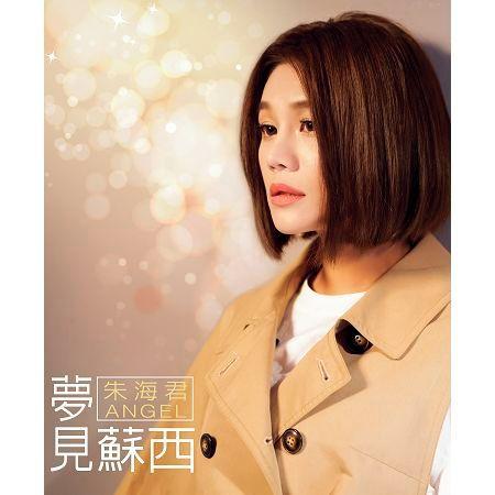 夢見蘇西 專輯封面