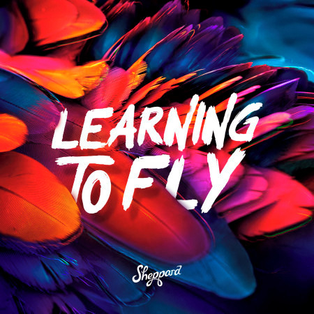 Learning To Fly 專輯封面
