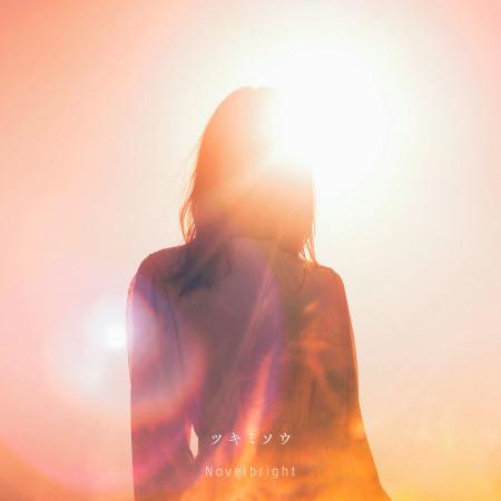 Evening Primrose 專輯封面