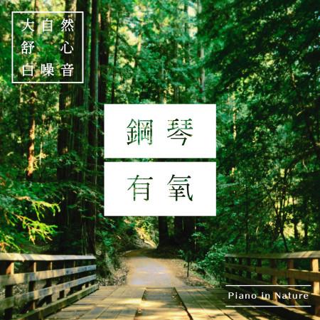 鋼琴.有氧 / 大自然舒心白噪音 (Piano in Nature) 專輯封面
