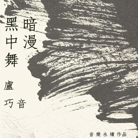 黑暗中漫舞 (音樂永續作品) 專輯封面