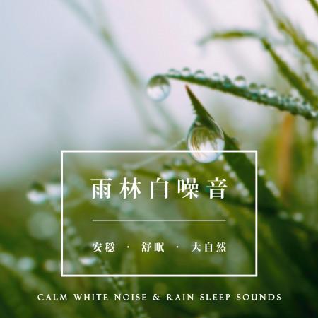 雨林白噪音:安穩.舒眠.大自然 (Calm White Noise & Rain Sleep Sounds) 專輯封面