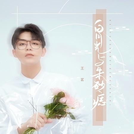 白月光與朱砂痣(男聲版) 專輯封面