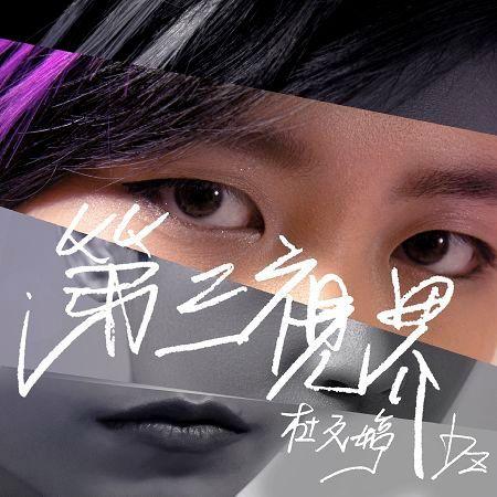 第三視界 專輯封面