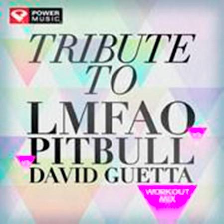 Tribute to Lmfao vs Pitbull vs David Guetta Workout Mix (60 Min Non-Stop Workout Mix (135 BPM) ) 專輯封面