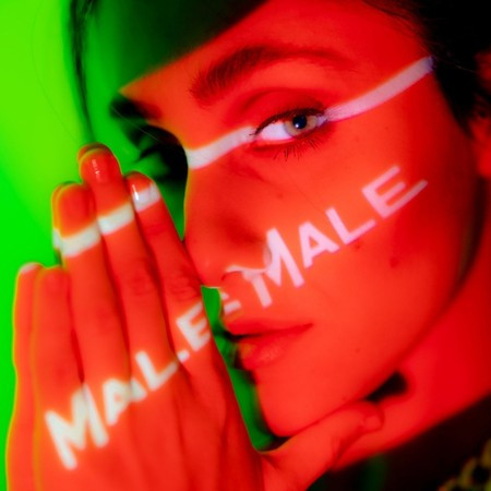 MaleMale 專輯封面