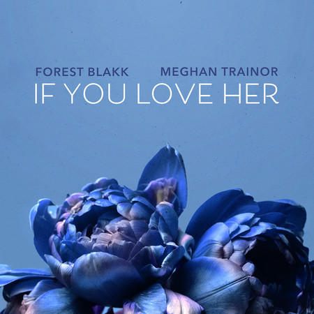 If You Love Her (feat. Meghan Trainor) 專輯封面