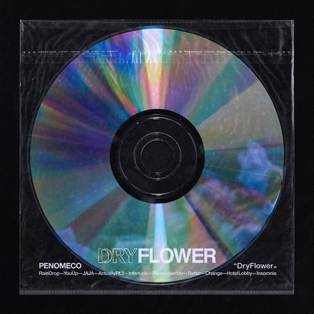 Dry Flower 專輯封面