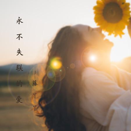 永不失聯的愛 專輯封面