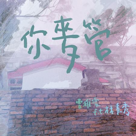 你麥管 (feat. 林美秀) 專輯封面