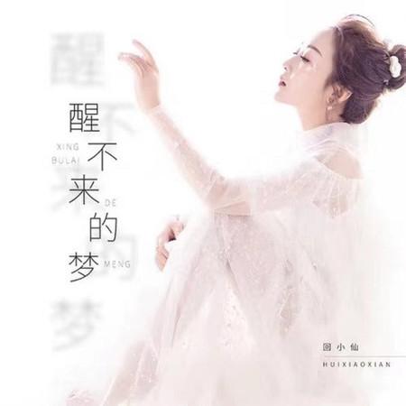 醒不來的夢(DJ沈念版) 專輯封面