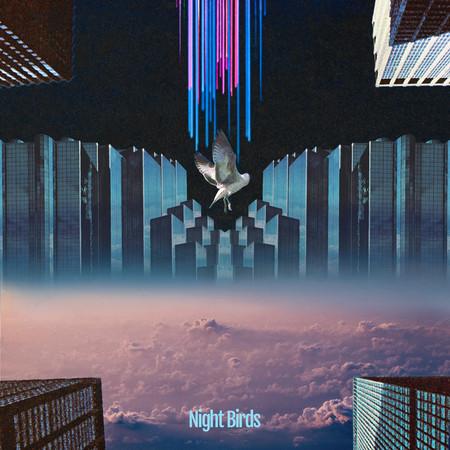 Night Birds (feat. Froya & Syohei Miyawaki) 專輯封面