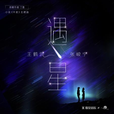 《半星》小說原聲帶 專輯封面