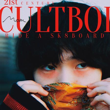 滑板上的21世紀異端男孩 專輯封面