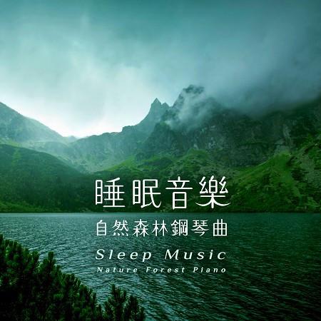睡眠音樂.自然森林鋼琴曲 (Sleep Music:Nature Forest Piano) 專輯封面