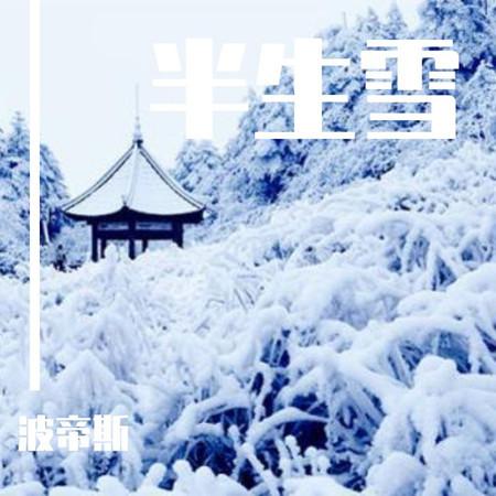 半生雪 專輯封面
