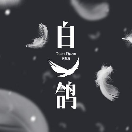 白鴿(男生版) 專輯封面