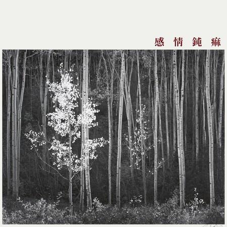 감정둔마 專輯封面