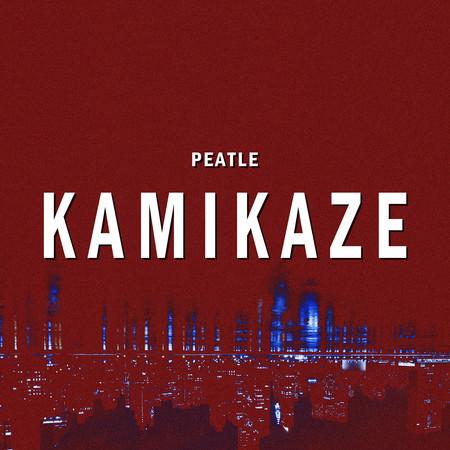 Kamikaze 專輯封面
