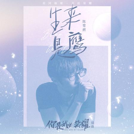 生來是鷹 (電視劇《你是我的榮耀》插曲) 專輯封面