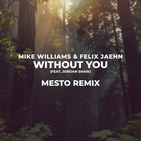 Without You (Mesto Remix) 專輯封面