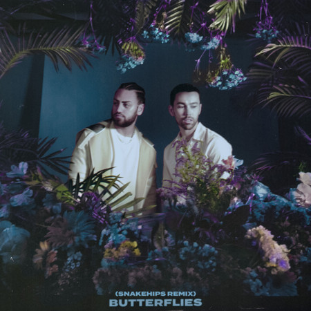 Butterflies (Snakehips Remix) 專輯封面